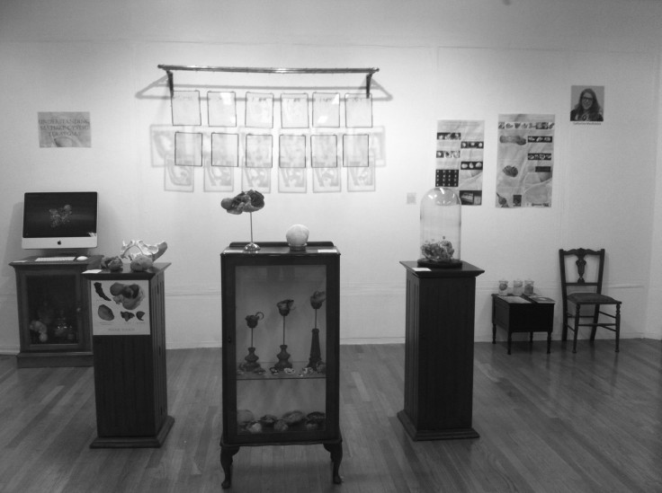 Greyscale. A glass cabinet and two wooden pillars containing models of ovarian cysts. There are also posters on the wall detailing this