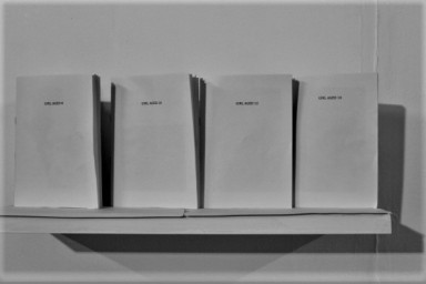 """Greyscale. Four identical white paper booklets on a shelf. The front reads """"girl aged 12."""""""
