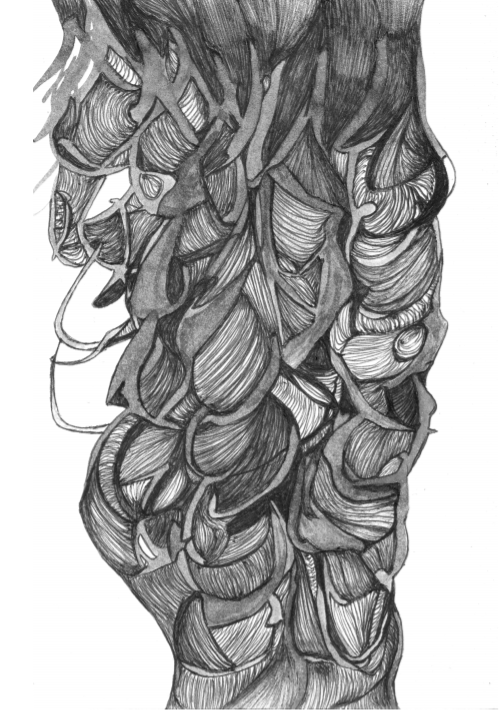 Greyscale. A drawing of lots of very intricately-braided hair, using varied shades.