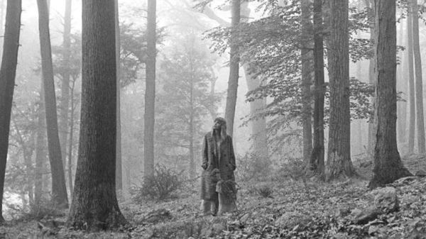 Greyscale. A landscape shot of Taylor Swift standing in the middle of a forest, looking up at tall pine trees. She is wearing a long coat and has her hands in her pockets.