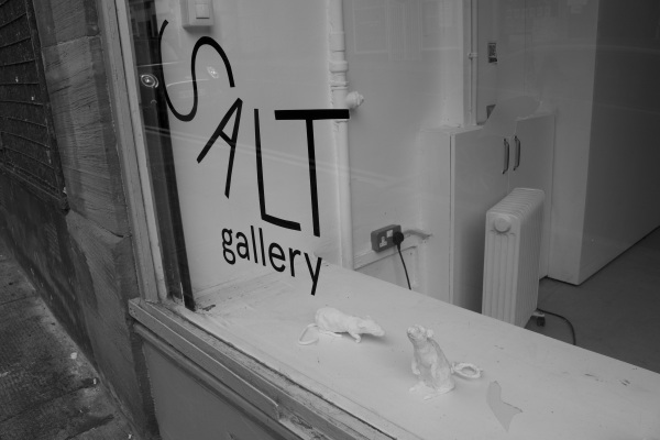Greyscale. Through the window of Saltspace Gallery, Chelsie Dysart's rat sculptures can be seen – so lifelike they look like they're about to scurry across the gallery floor and out into the street.